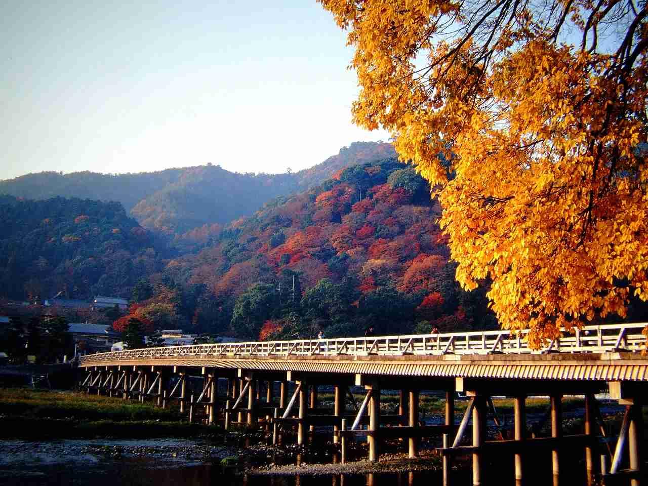 岚山渡月桥图片