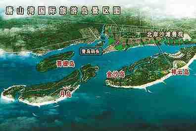 菩提岛植被繁茂,品种众多
