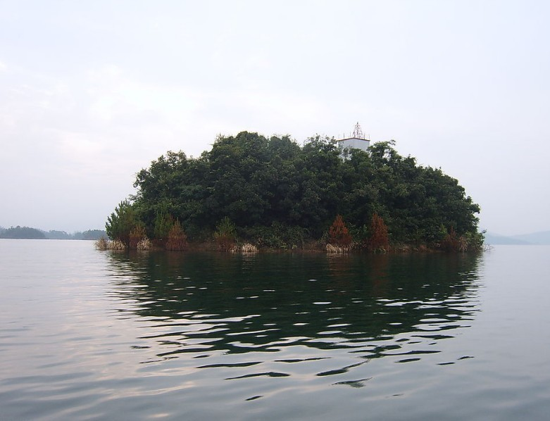 千岛湖小岛