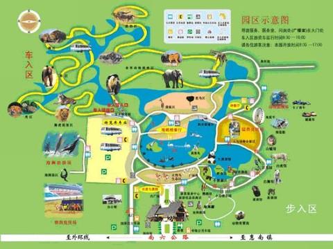 上海野生动物园旅游攻略